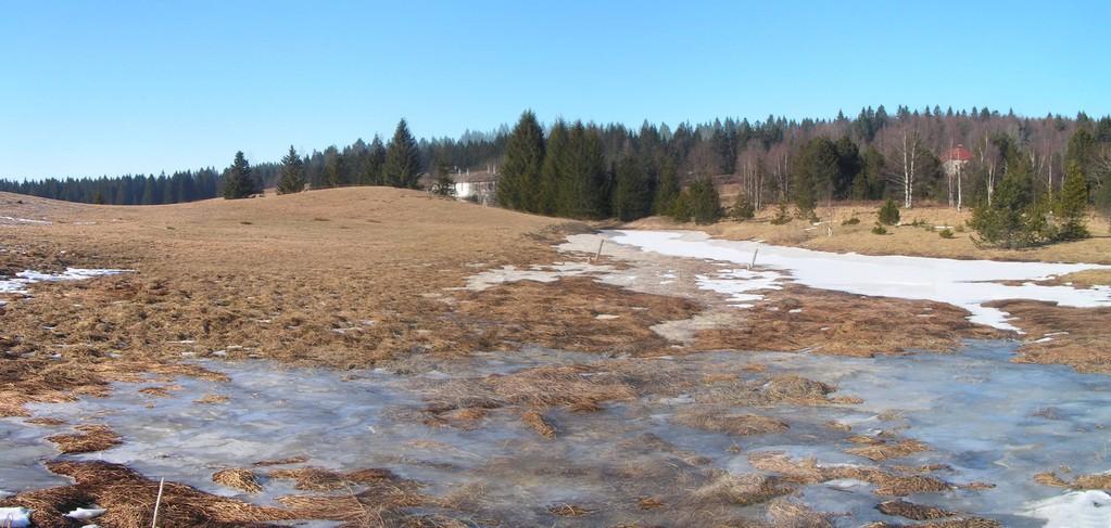 31 janvier - balade autour du lac des Mortes - effets de gel