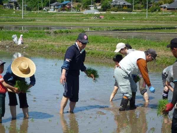 素晴らしい天気の下で、水も温かく気持ちよく裸足で植えました。