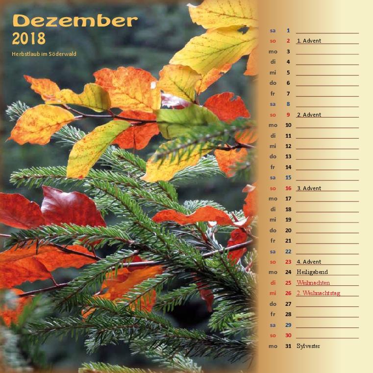 Kalenderformat 21x21 - Hoher Meißner