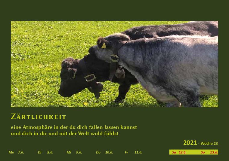 Wochenkalender Format A5  - Allgäu