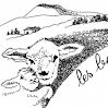 Les Bergers du Beauvoir (à St Christophe la Grotte)