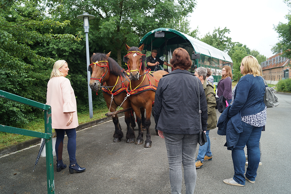 06 - während andere gerne die Pferde kennen lernen möchten.