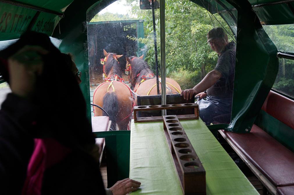 10 - Tolle Sicht auf die Pferdepopos - und natürlich auf unseren Chauffeur Bernhard Knoche.