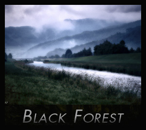 Black Forest - aapedition