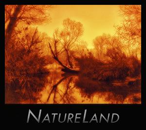 NatureLand - aapedition