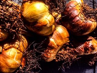 Knoblauch. Rezept Aglio e Olio mit Produkten aus dem Sortiment.