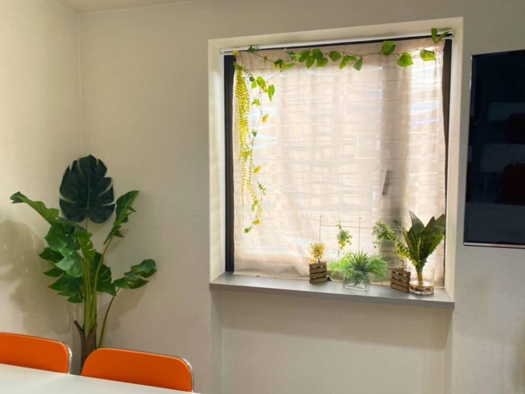観葉植物を全てのスペースに追加しました
