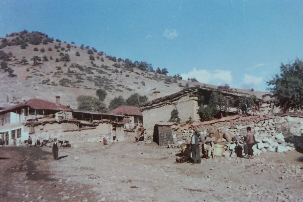Kasabamizin en eski görüntülerinden. Bitlilerin, Cörenlerin ve Deliumarlarin evleri. Asagi Caminin önü.