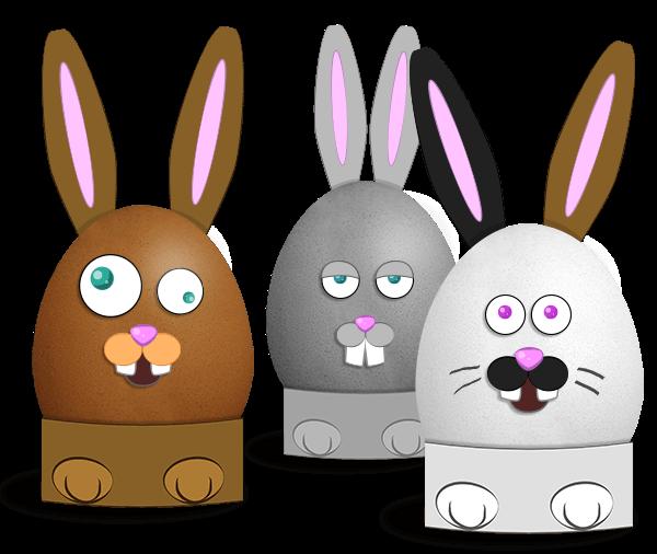 Oeufs de lapins