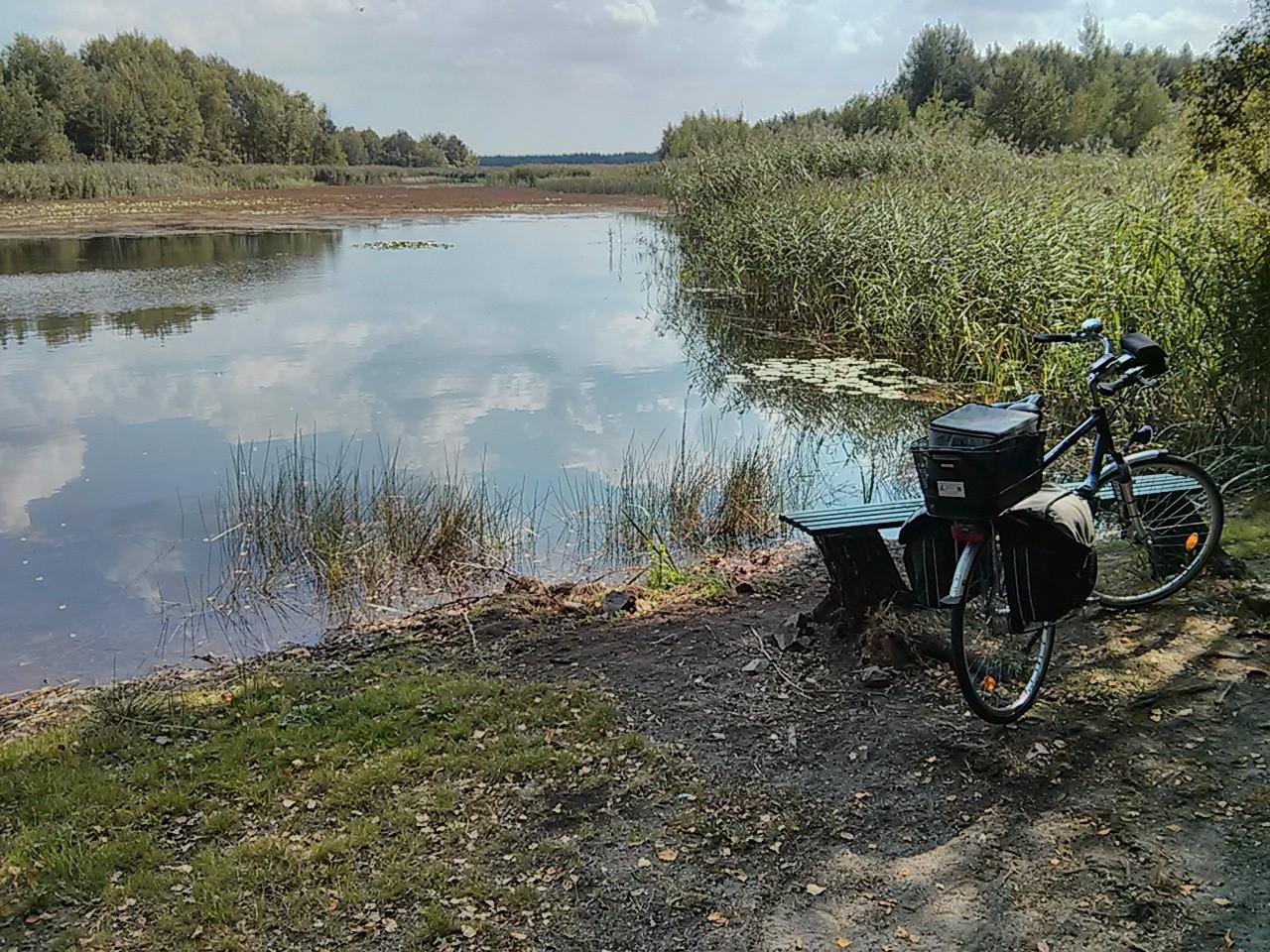 Rast am Senftenberger See