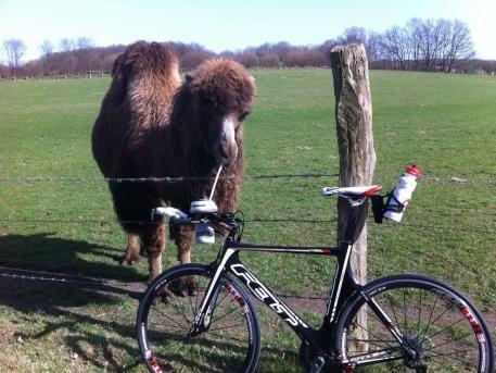...und nicht vergessen - zu einer Radtour immer genug zu trinken mitnehmen