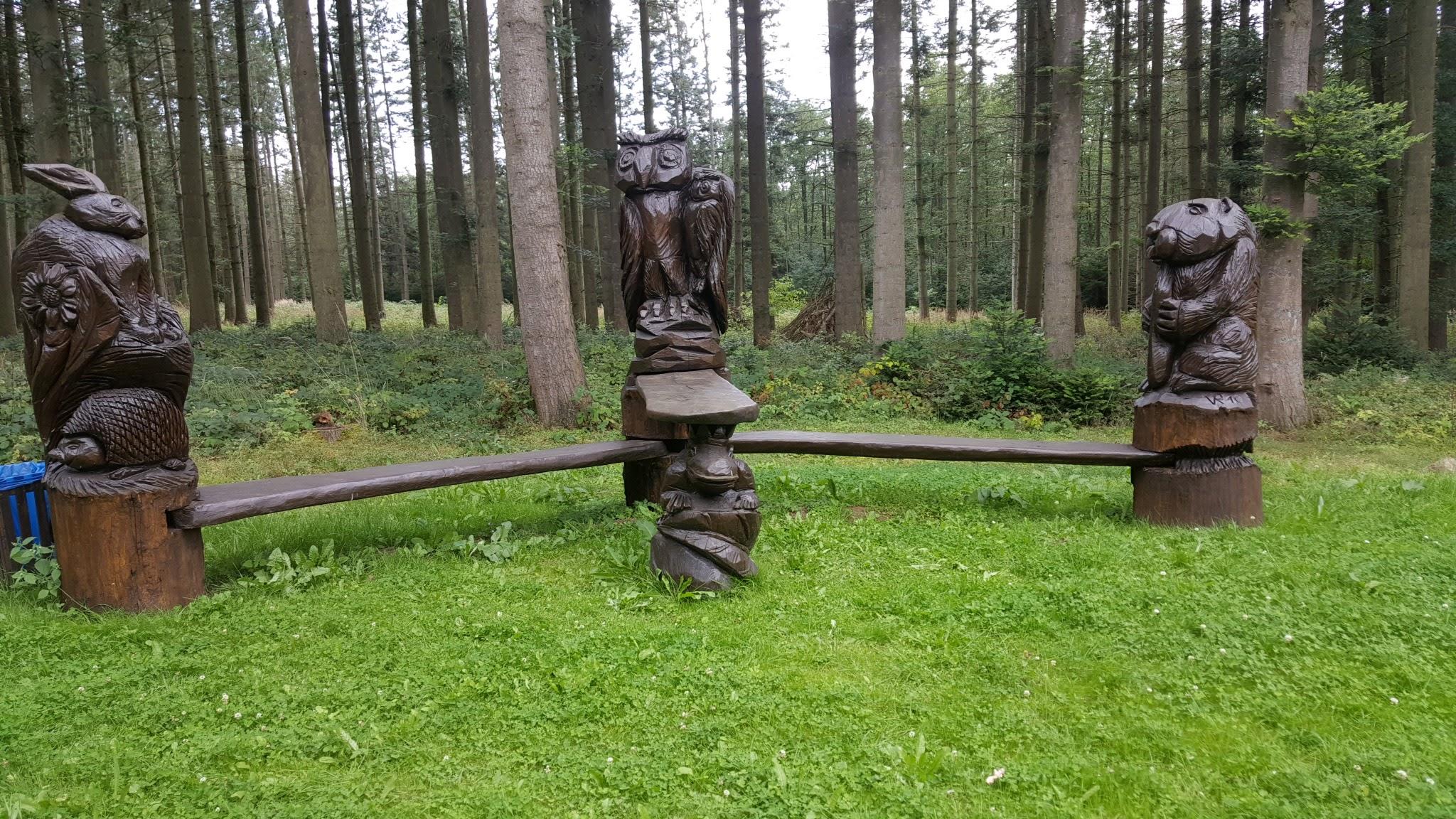 Stadtwald bei Tribsees