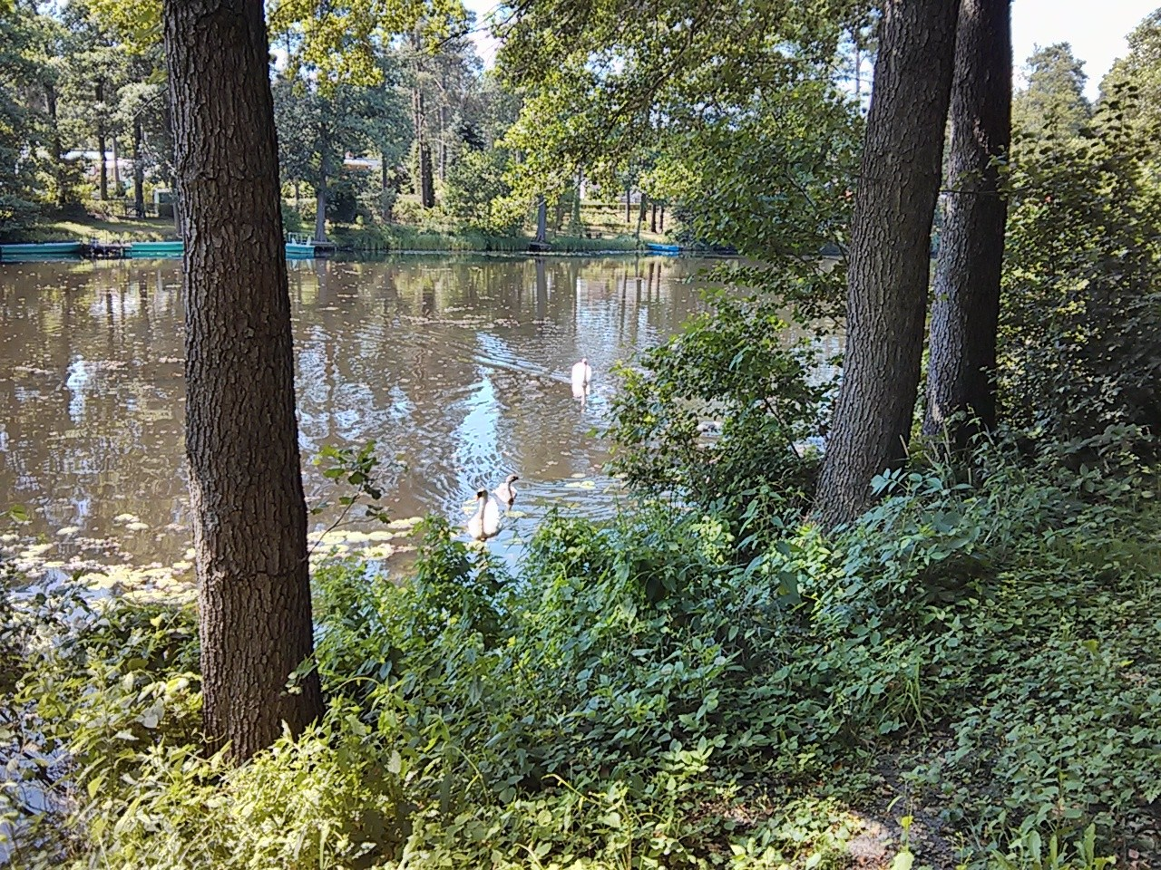 Rast am Friedrich-Wilhelm-Kanal