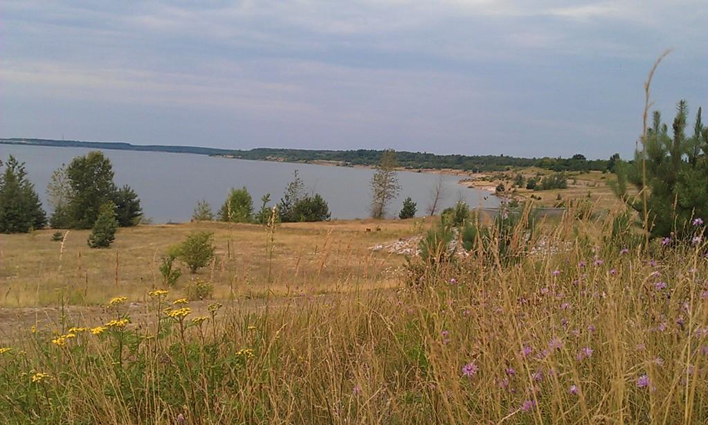 an der Lausitzer Seenkette