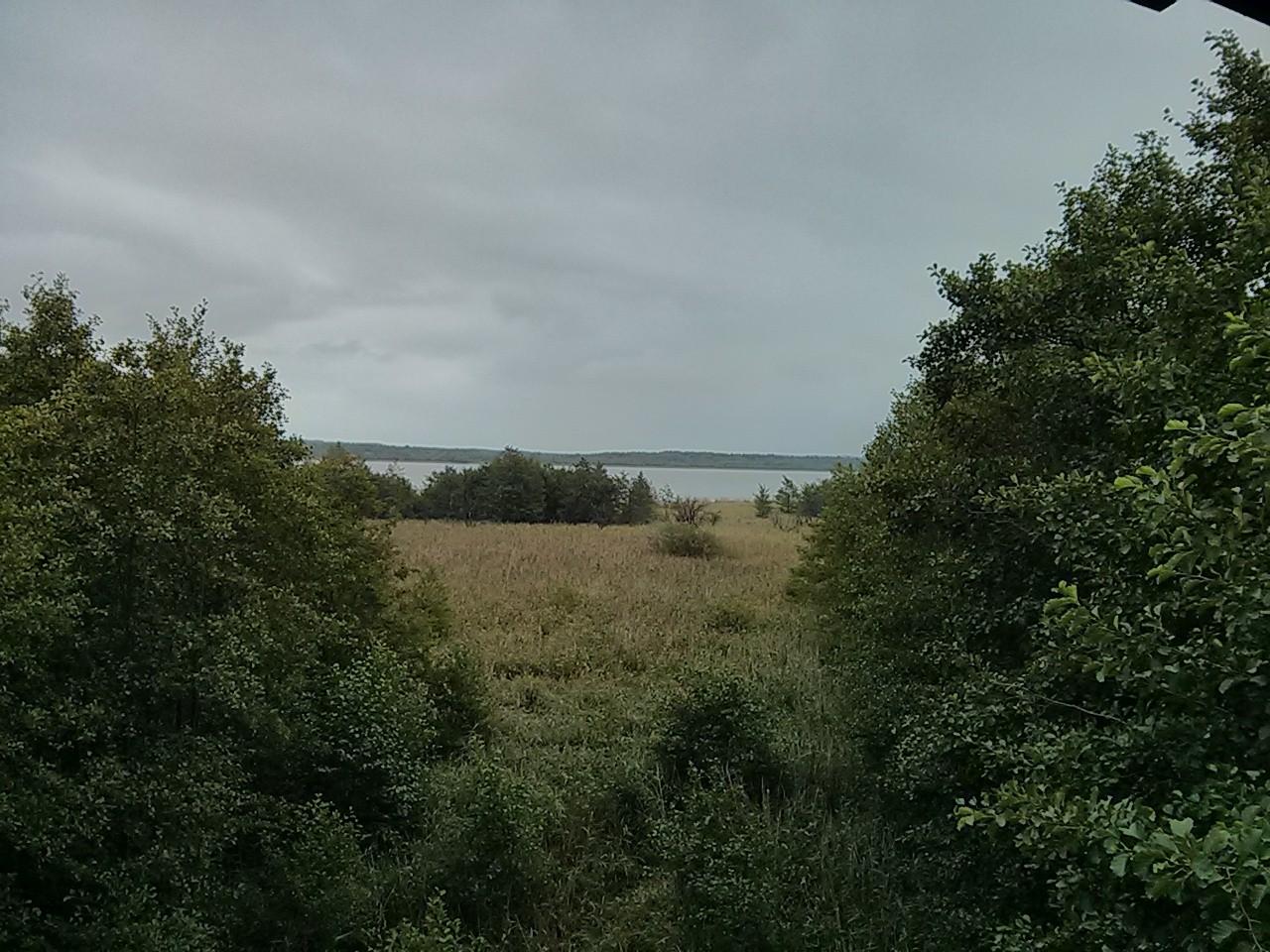 Specker See