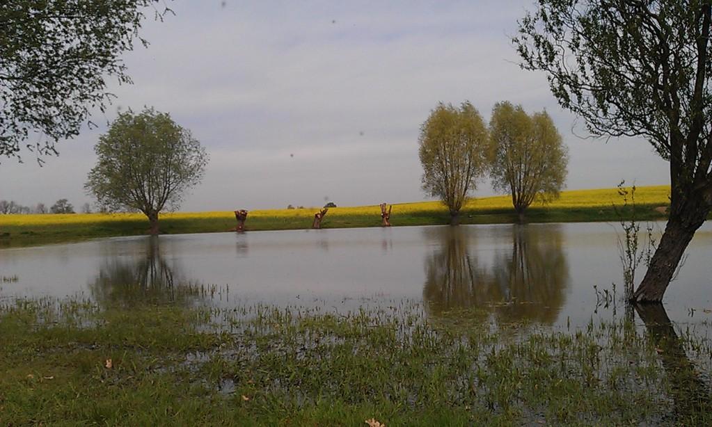 einziges See an der Radtour ist ein Fischteich