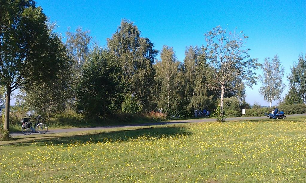 am Senftenberger See