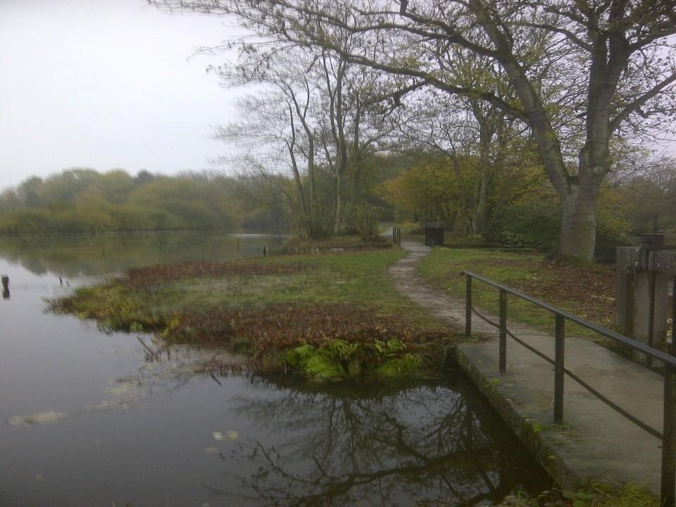 Une passerelle sur les étangs Frise Camping pêche Somme
