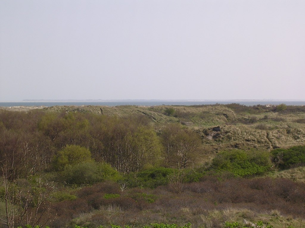 Borkum Dünenlandschaft