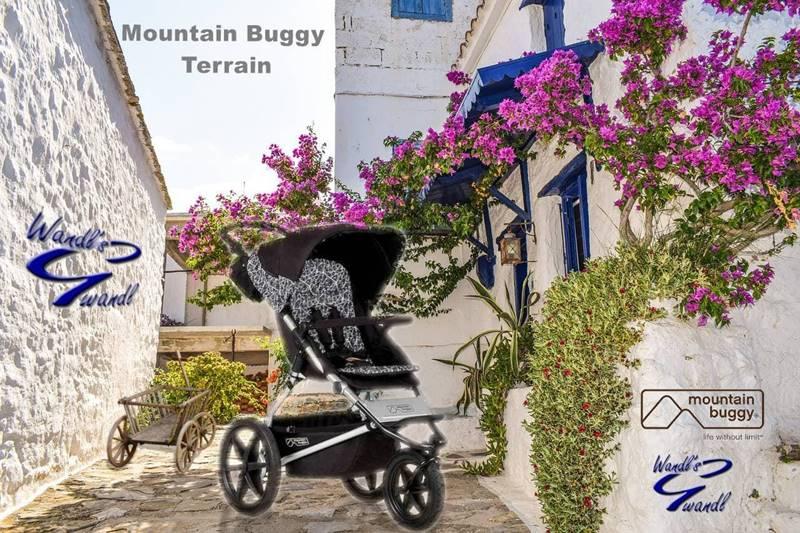 mountain buggy terrain online
