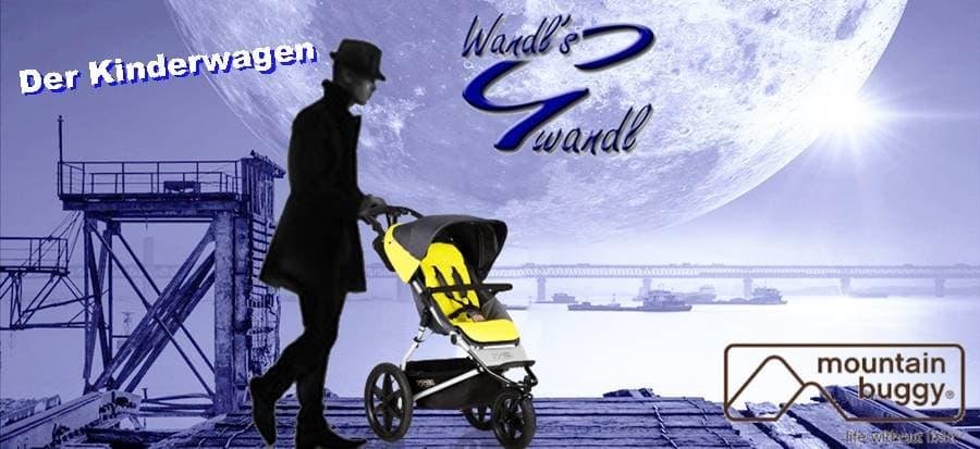 kinderwagen-kaufen