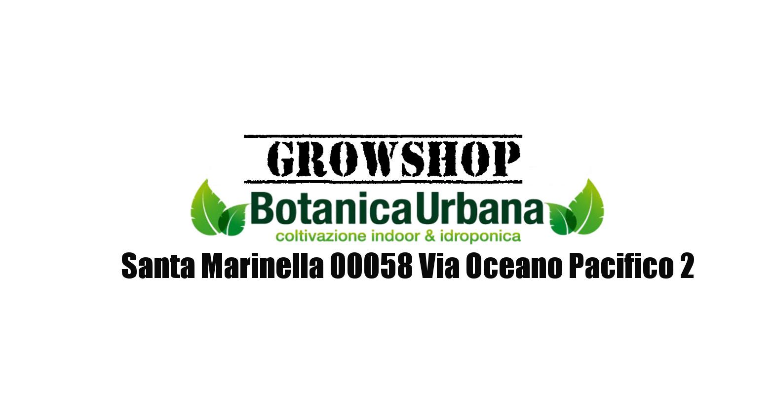 Risultati immagini per botanica urbana santa marinella