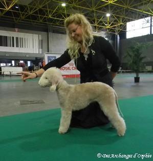 Tsarine jugée Best Baby par Mme Jacqui Hurley (GB).