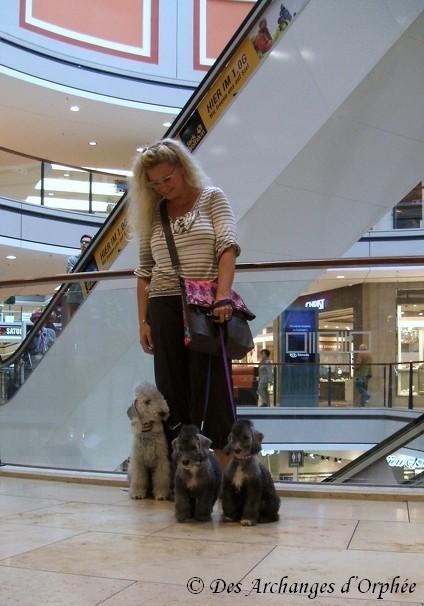 On fait du shopping avec mon frère et ma maman Olga
