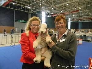 Merci à Hélène Denis et à Suzy Hild de la Société Canine de Lorraine de nous avoir invité à cet évènement.