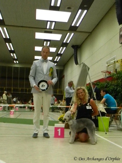 Olga, KlubSieger 2013 et BOB /meilleure de race.