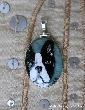 Boston terrier sur pierre Amazonite.