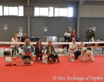 Cliquez sur la photo pour accéder à la rubrique de notre Championne Olga