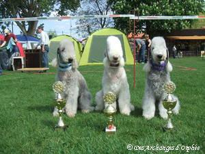 Nos 3 Championnes !