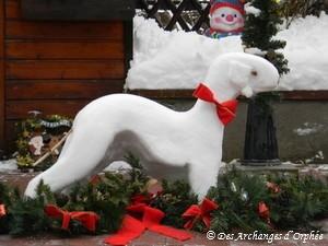 Mon Bedlington des neiges décembre 2010.