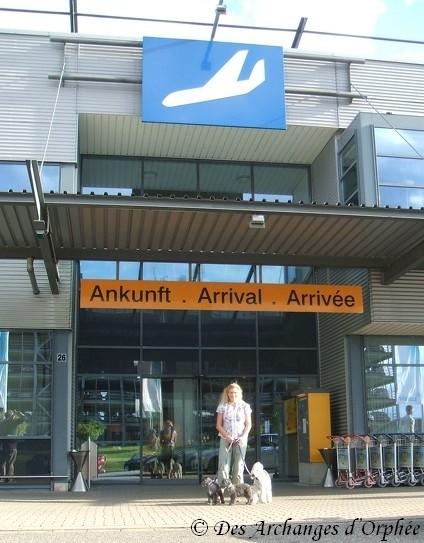 Un petit tour à l'aéroport !
