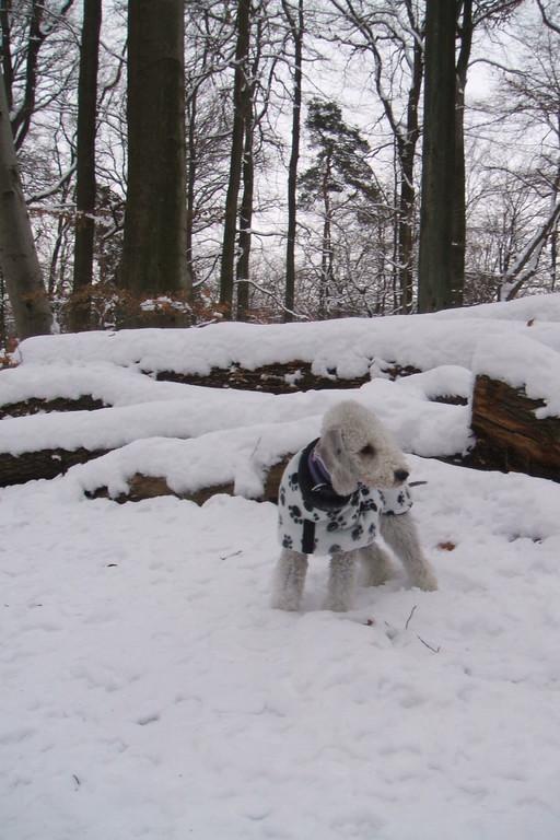 Olga découvre ses premiers flocons de neige