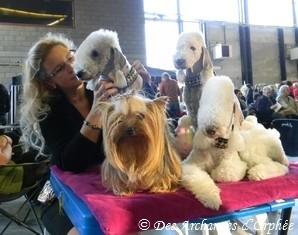 Les filles à l'exposition de Courtrai, novembre 2012