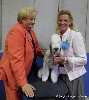 CH. Jeune du Luxembourg / 1er Excellent - CACIB du Luxembourg jugé par Mme Martha Heine (Allemagne).