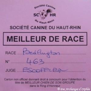Confirmation LOF - BOB à Guebwiller (Alsace) juge: M.Escoffier - Ring d'honneur