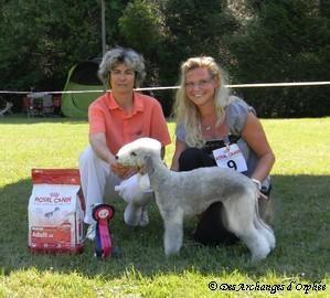 BOB jugé par Mme Brigitte Couvidat à la Régionale d'élevage.