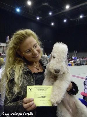 Tsarine - Best Baby à la CACIB de Louvain jugée par Mme Doppelreiter Maria-Louise (Autriche).