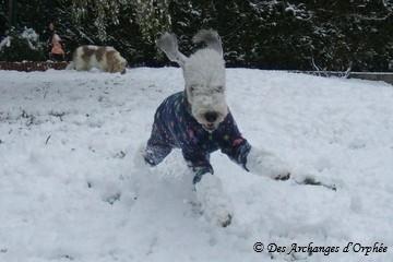 Snow Party (cliquez sur la photo pour accéder à la rubrique)