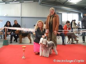 Tsarine et Olga à la Régionale d'Elevage CFADT - Lorraine 2012 jugées Meilleure paire.