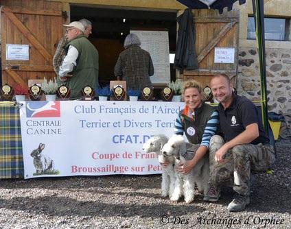 Olga & Orphée dans les 4 terriers de la sélection du CFAT-DT.