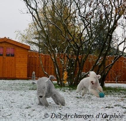 Première neige avec tata Tsarine