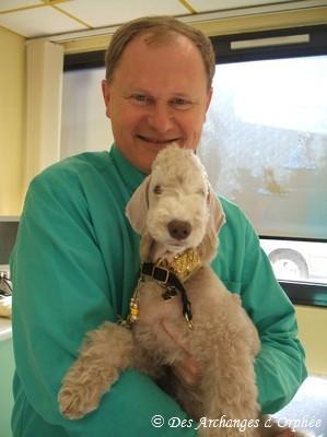 Tsarine avec notre vétérinaire, Dr Peyron.