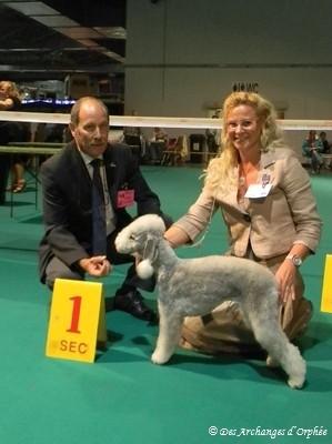 Olga - 1ère Excellent - Meilleure Jeune et BOB - Meilleure de Race, jugée par M. Jean-Luc Escoffier (France).