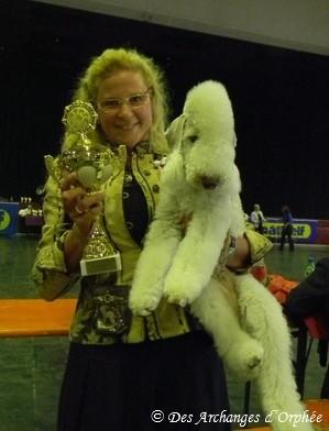 Meilleure femelle ouverte et Championne du Luxembourg à 23 mois !