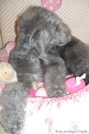 Olga - 3 mois 1/2.