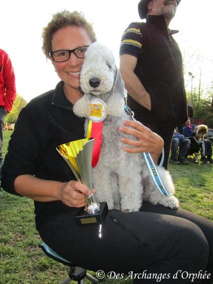 cliquez sur le lien pour accéder à la rubrique agility d'Olga notre championne